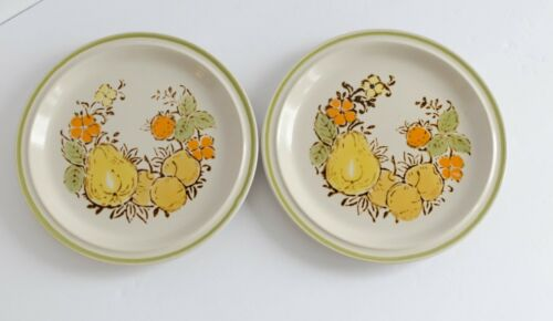 Boho Kitchen Set 2 Salad Plates Harvest Collection Valley Fruits Stoneware