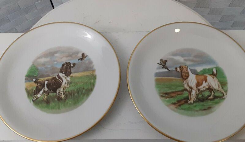 Royal Signet Welsh Springer Spaniel Plate Set Of 2