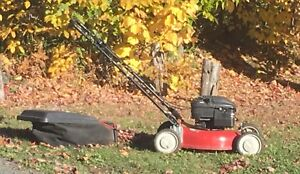 Lawnmower with bag