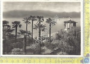 Cartolina-Postcard-Stresa-Giardini-anni-039-50
