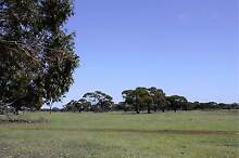 LAND FOR SALE - 117 acres; Wagin - ALL OFFERS CONSIDERED Piesseville Wagin Area Preview