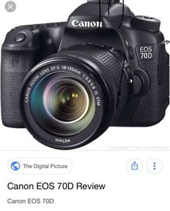 Looking for a canon 70d BODY ONLY