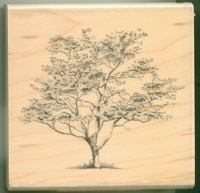 INKADINKADO rubber stamp DOGWOOD TREE wood mounted, Garden, Nature, (Inkadinkado Garden)