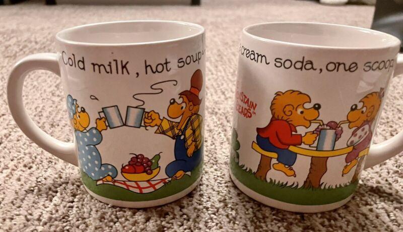 The Berenstain Bears Coffee Cup / Mug vtg 1987 Princess House Berenstein
