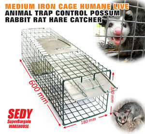 MEDIUM-Iron-Cage-Humane-Live-Animal-Trap-Control-POSSUM-RABBIT-RAT-HARE-CATCHER