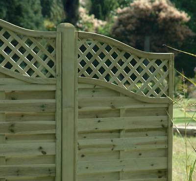 European Omega Wing Decorative Fence Panel 900mm x 1600mm Pressure Treated