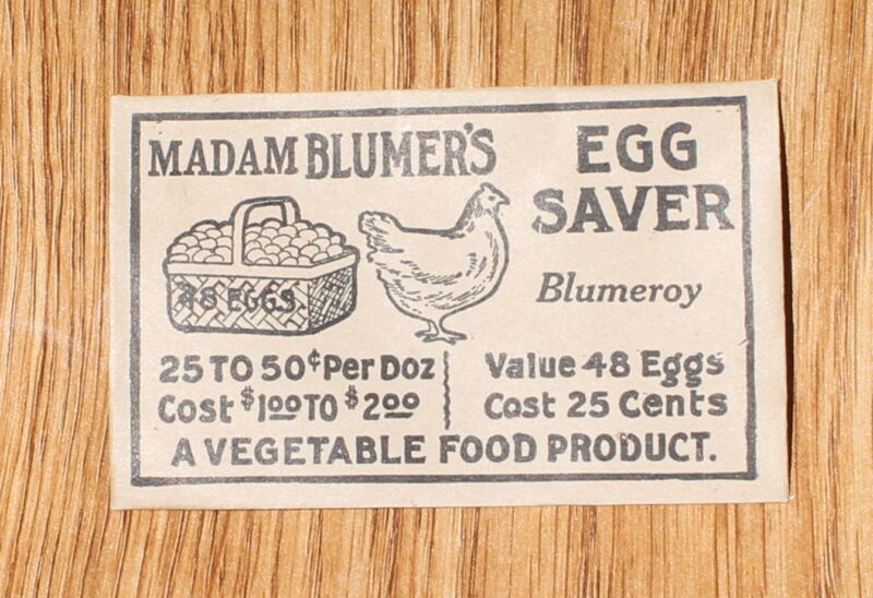 Madam Blumer's Egg Saver Envelope