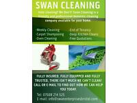 PROFESSIONAL WEEKLY CLEANER / END OF TENANCY / OVENS / CARPET CLEANING AND MUCH MORE
