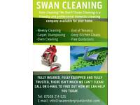 PROFESSIONAL WEEKLY CLEANER, OVEN CLEANIG, CARPET SHAMPOOING AND MUCH MORE