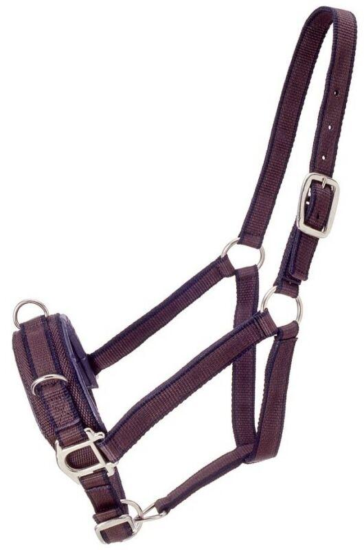 Nylon Lunging Horse Halter - Caveson