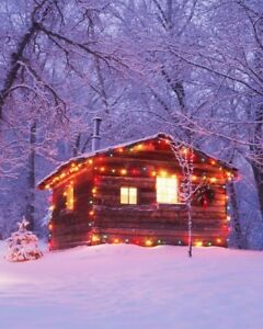 Looking to rent a Cabin in December