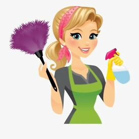 PROFESSIONAL CLEANING SERVICE AND CARPET, FURNITURE CLEANING