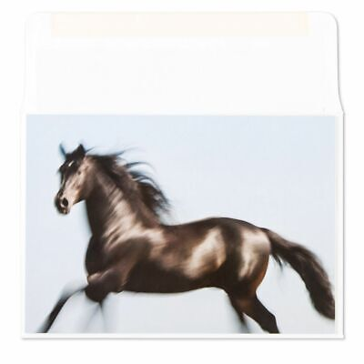 PAPYRUS by Marchel Schurman  Galloping Horse Blank Card