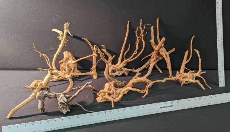 Spiderwood | 2lb. Assorted Bulk