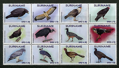 Suriname 2017 MNH Birds 12v Block Birds of Prey Falcons Bird Stamps