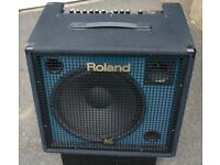 Roland KC550 keyboard amp also could be used for Bass / drumpads