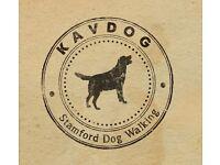 Kavdog - Dog Walking Service in Stamford, Lincolnshire
