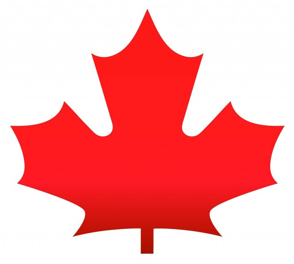New In Stock 2018 Canada 9999 Silver Maple Leaf 1 Oz