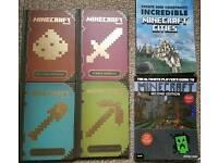 Minecraft set of 6 books.