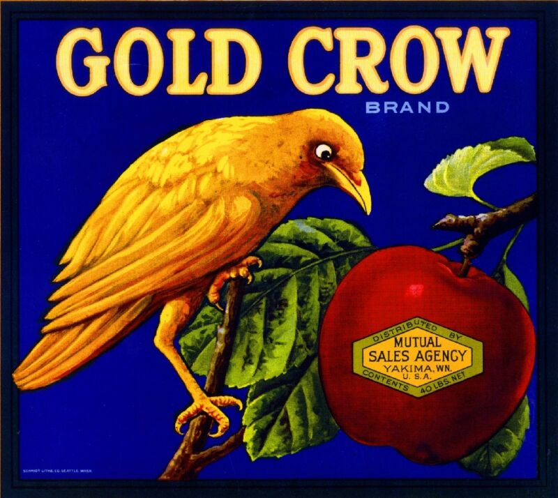 Yakima Washington State Gold Crow Bird Apple Fruit Crate Label Vintage Art Print