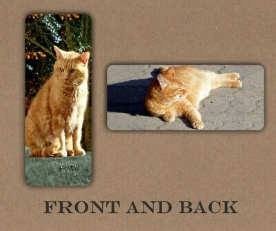 CAT ANIMAL PRETTY LAMINATED BOOKMARK