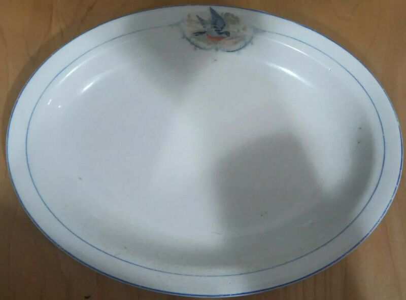 Derwood WS George 1500 China Pottery Oval Platter With A Bluebird