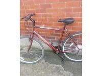 Apollo cx 10 bike hybrid adult