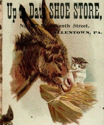 1880's Warmkessel's Shoe Store Lehigh Valley Barn Scene Donkey & Kitten Cat (Lehigh Valley Stores)