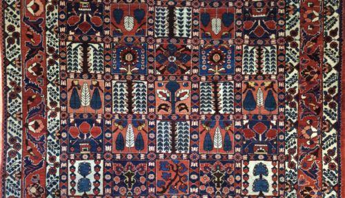 Beautiful Bakhtiari - 1960s Vintage Persian Rug - Tribal Panel Carpet 6.8 X 9.9