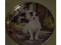 lovely collectable plate of jack russell dog and tractor by mandie haywood.