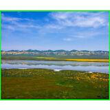 WOW! SAN LUIS OBISPO COUNTY RANCH LAND 2.5 ACRES SODA LAKE CALIFORNIA VALLEY