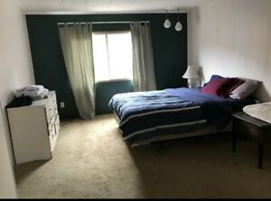 Large room with a private bathroom available March 1st (Canmore)