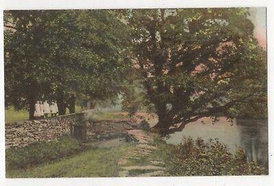 Llanrwst River Side Path Vintage Peacock Postcard North Wales 821b