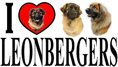 I LOVE LEONBERGERS Car Sticker By Starprint - Featuring the Leonberger