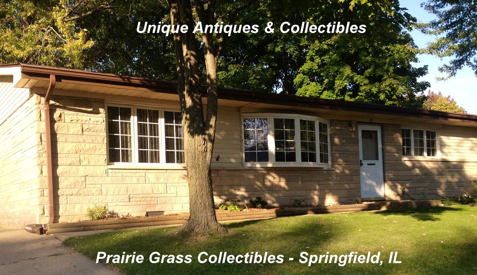 Prairie Grass Collectibles