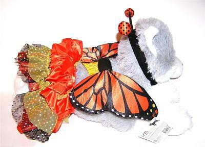 Animal Welfare League Benefit Dog Halloween Costume MONARCH BUTTERFLY SIZE S/M (Monarch Butterfly Dog Costume)
