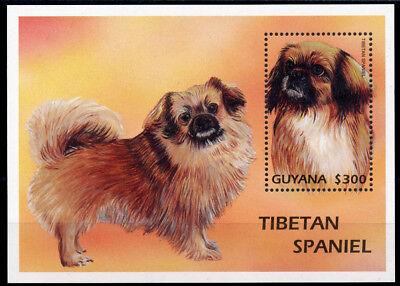 TIBETAN SPANIEL Dog Postage Stamp Souvenir Mini Sheet GUYANA - 1997 Mint MNH