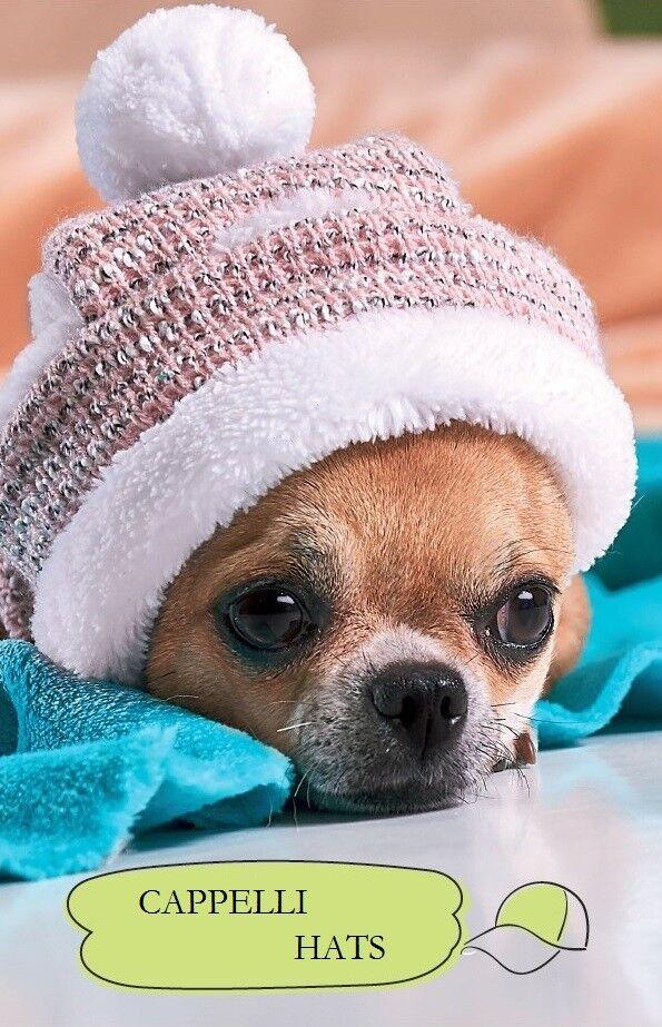 Pet Fashion – Cappello Invernale per Cane e Gatto Interno Caldo Peluche XS, S, M