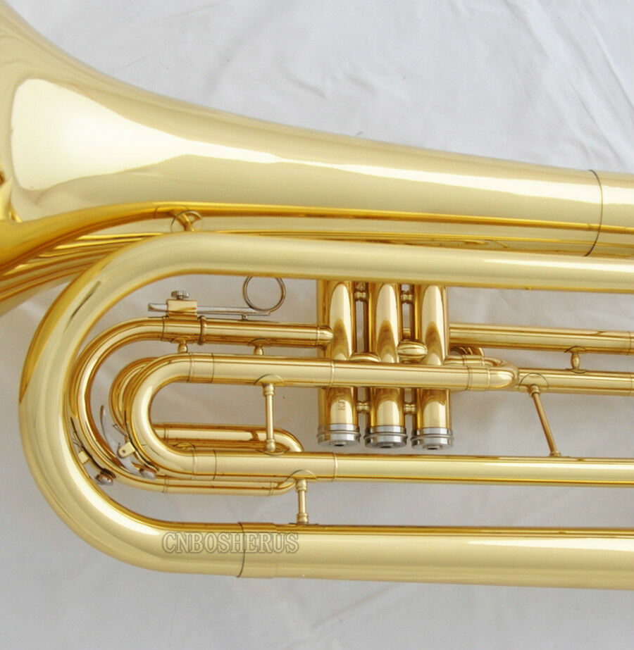 Should I buy this gold marching baritone?
