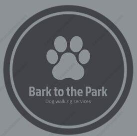 dog walker and drop ins
