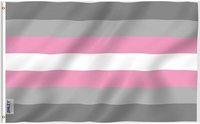 Anley 3x5 Foot Demiboy Pride Flag Demigirl Pride Flag Demiwoman LGBT Flag