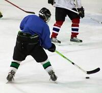 Play Hockey, Get/Stay Fit