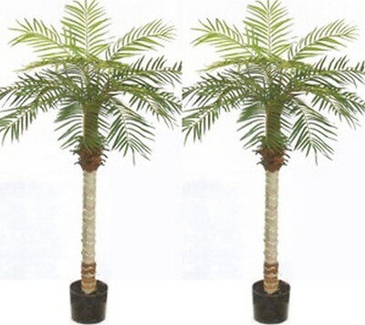 2 Artificial Phoenix Palm 5' Tree Bush Plant Pot Pool Patio Deck Porch Date (Potted Plants Deck)