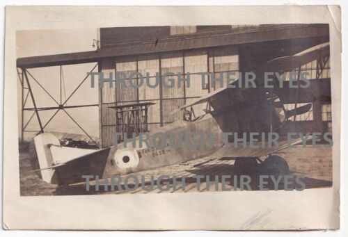 Original WW1 photo Fokker in RAF markings Bickendorf Cologne Germany 1919