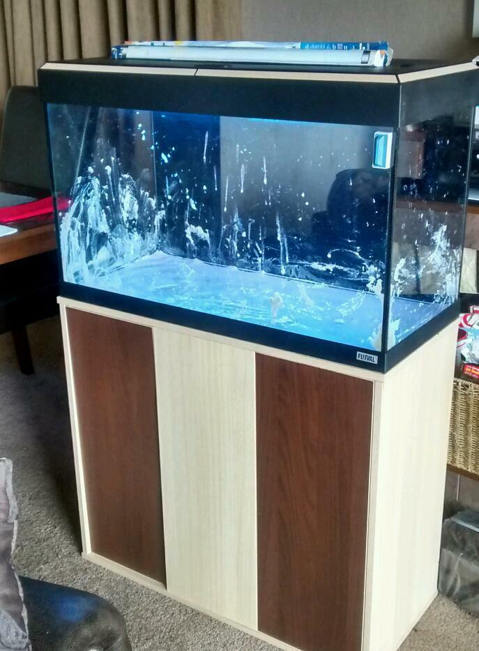 fluval 120 litre aquarium in helensburgh argyll and bute gumtree. Black Bedroom Furniture Sets. Home Design Ideas