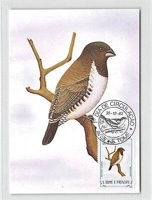 S.TOME MK 1983 VÖGEL KLEINELSTERCHEN BIRDS CARTE MAXIMUM CARD MC CM /m282