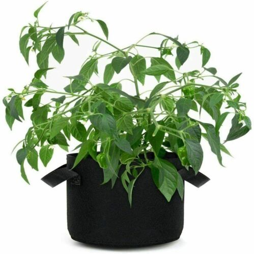 2-Pack Plant Grow Bags Heavy Duty Thickened Nonwoven Fabric Pots with Handles