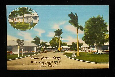 1950s Royal Palm Lodge No. Tamiami Trail at 17 St. Sarasota FL Postcard (Tamiami Trail Sarasota Fl)