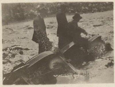 Rppc 1912 Pueblo Co Flood Men In Water Postcard   Now On Sale   Pc3973