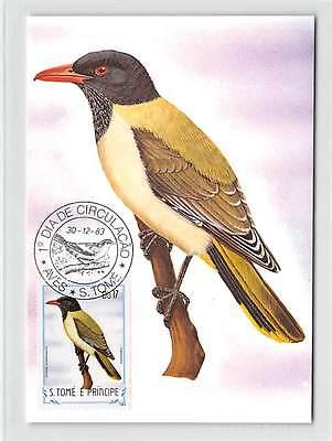 S.TOME MK 1983 VÖGEL SAO-TOME-PIROL BIRDS CARTE MAXIMUM CARD MC CM /m296